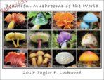 Beautiful Mushrooms of the World calendar 2017