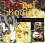 Fungal Boogie