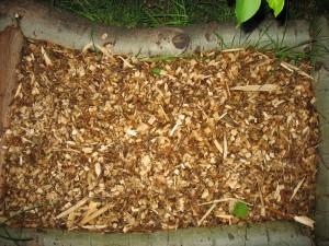 Garden Giant Mushroom Bed