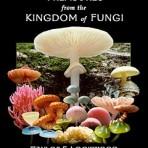 TREASURES from the KINGDOM of FUNGI DVD
