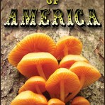 Mushrooms of America DVD