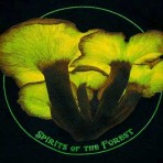 Spirits of the Forest T-shirt