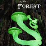 Spirits of the Forest DVD